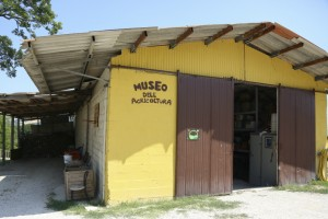 museo agricoltura